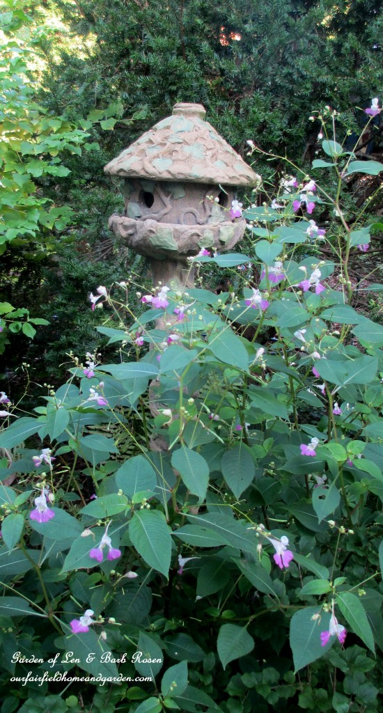 Impatiens Balfourii & the concrete birdhouse http://ourfairfieldhomeandgarden.com/garden-walk-early-fall-garden/