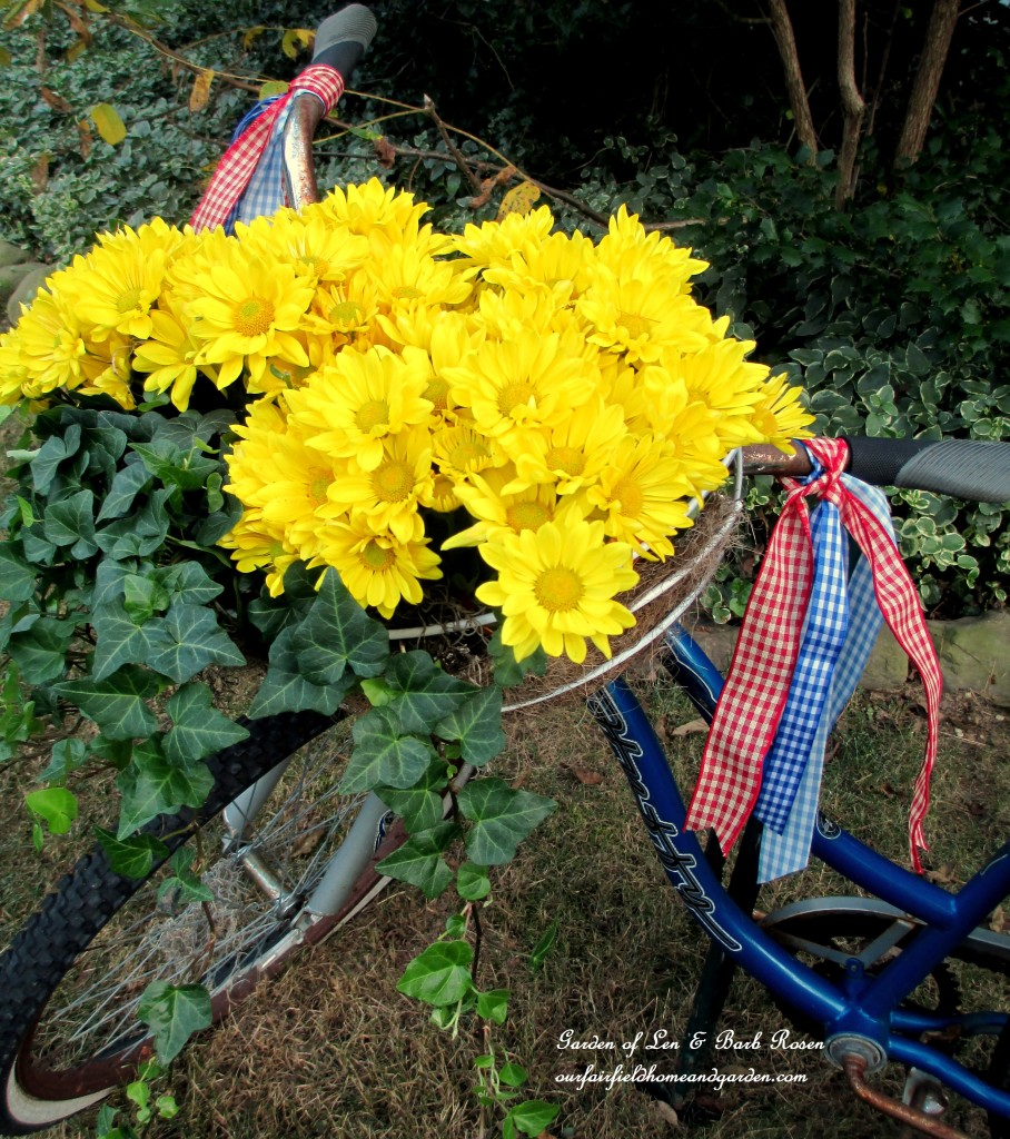 Garden Bike Planter decked out for Fall! https://ourfairfieldhomeandgarden.com/fall-is-in-the-air/