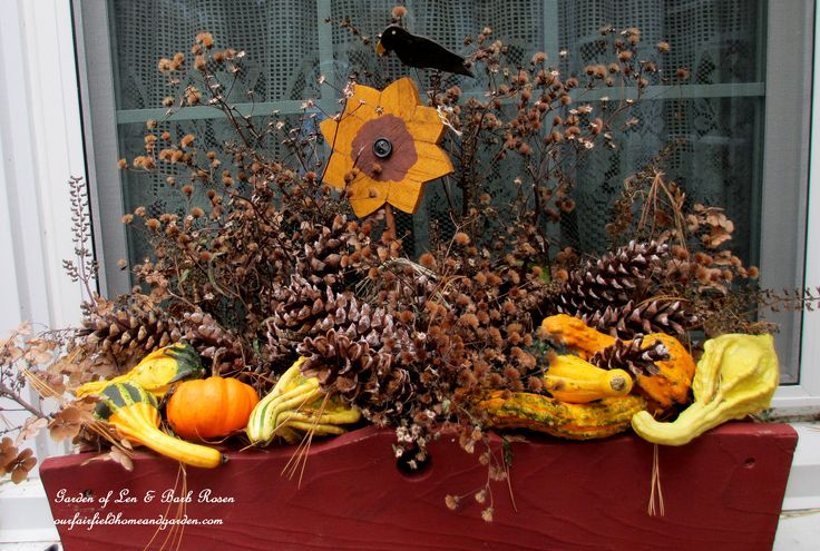 Fall window box filled with gourds & pine cones https://ourfairfieldhomeandgarden.com/autumn-garden-accents-inside-and-out/