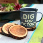 Natural Branch Coasters * click it !