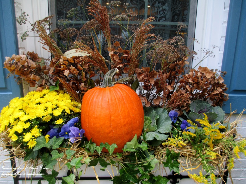 Fall windowbox with pumpkin, mums, ornamental kale, hay, winter pansies, ivy and seed heads & dried flowers from the garden.