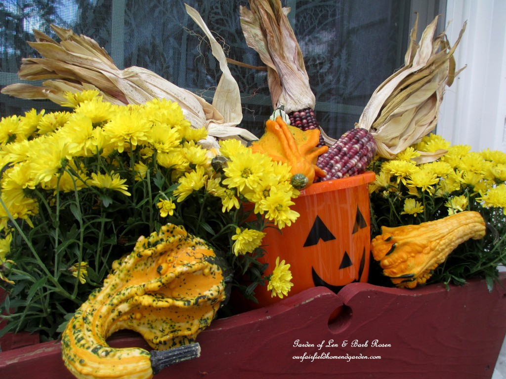 Fall Kitchen Window Box http://ourfairfieldhomeandgarden.com/fall-decorating-at-our-fairfield-home-and-garden/