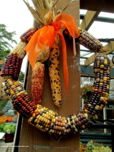 Here's the corn cob wreath I spotted in a garden center for $15 ! https://ourfairfieldhomeandgarden.com/diy-fall-corn-cob-wreath/