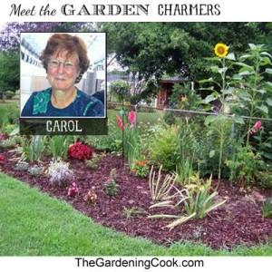 Meet Carol ~ The Gardening Cook !