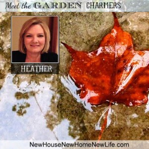 Meet Heather of New House, New Home, New Life !