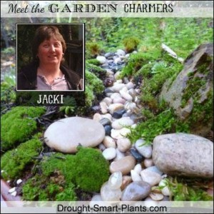 Jacki of Drought Smart Plants !