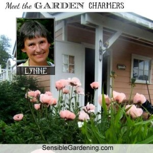 Meet Lynne of Sensible Gardening & Living !
