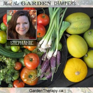 Meet Stephanie of Garden Therapy!