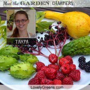 Meet Tanya of Lovely Greens!