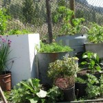 Recycled Gardens * click it !