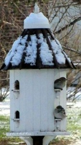 winter birdhouses http://ourfairfieldhomeandgarden.com/its-time-to-feed-the-birds/