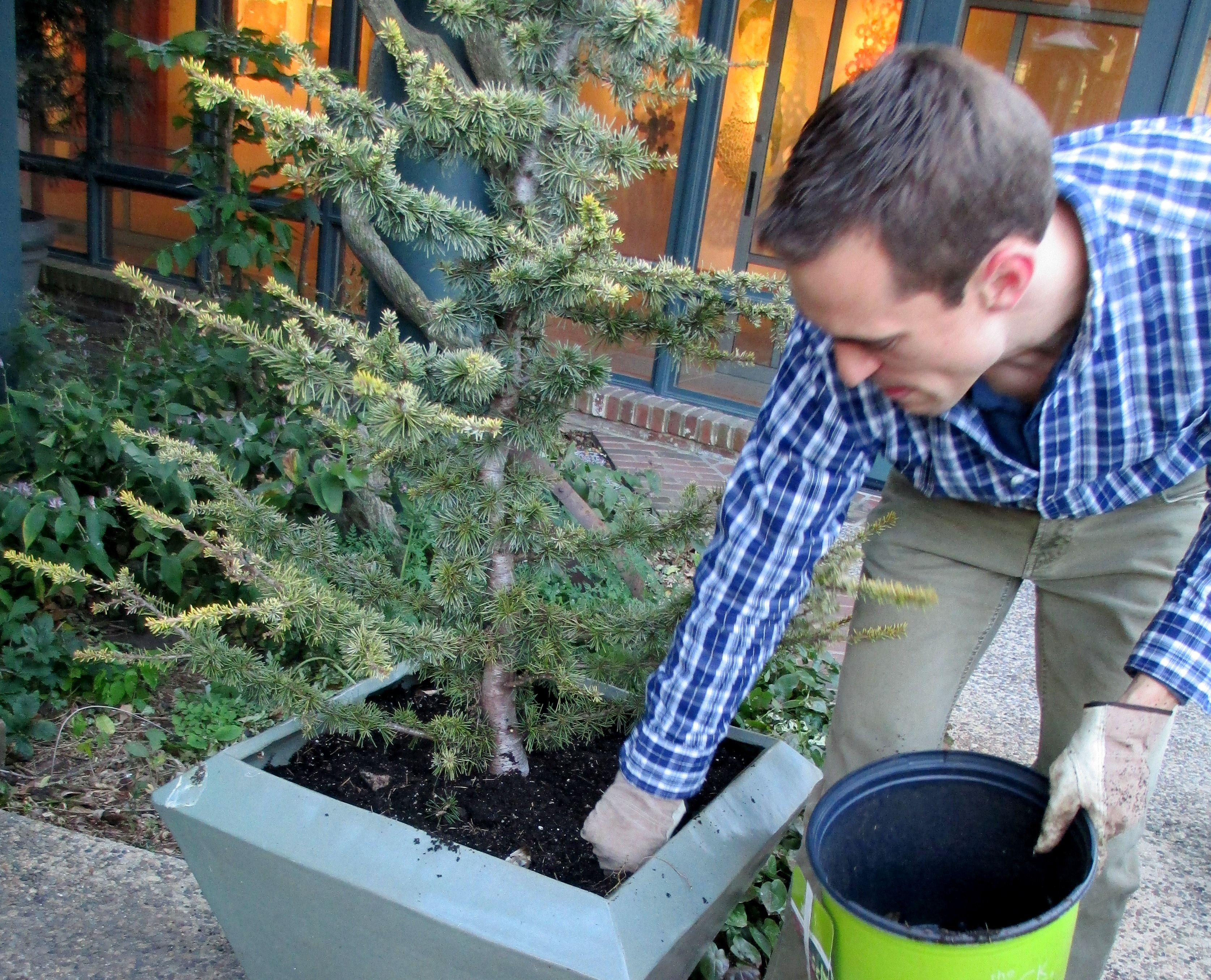 diy winter containers workshop our fairfield home u0026 garden