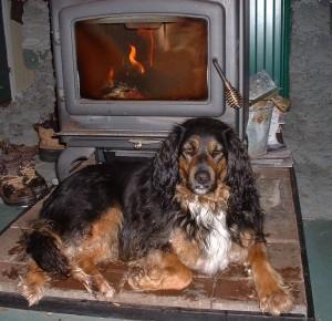 Firewood Poem https://www.facebook.com/permalink.php?story_fbid=609776962423470&id=140610106006827&aymt_tip=1