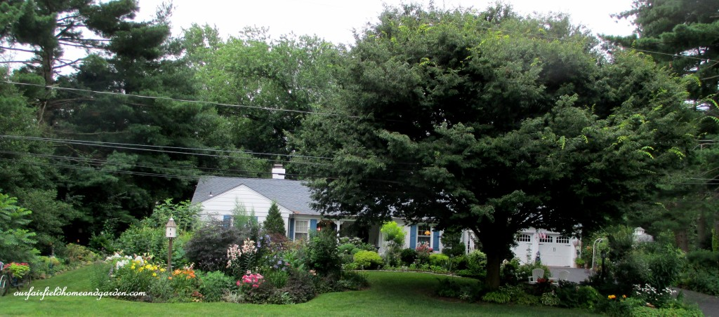 Our Fairfield Home & Garden http://ourfairfieldhomeandgarden.com/5-years-before-after-in-our-fairfield-garden/