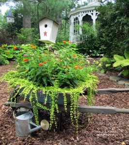 Planted Rusty Wheelbarrow https://ourfairfieldhomeandgarden.com/flower-pairings/sun-loving/