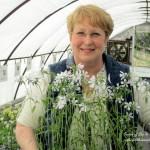 Barb Rosen ~ Our Fairfield Home & Garden https://www.facebook.com/OurFairfieldHomeAndGarden#