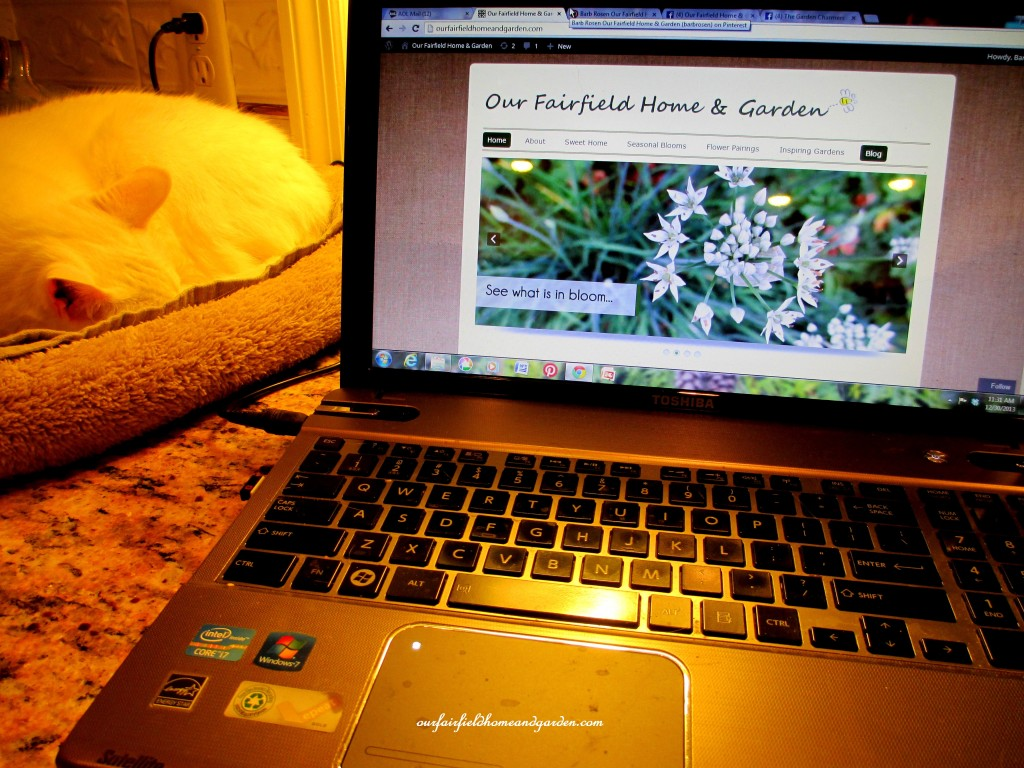 laptop computer http://ourfairfieldhomeandgarden.com/winter-comforts-at-our-fairfield-home-garden/