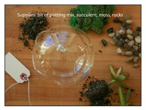Supplies-for-terrarium http://ahealthylifeforme.com/2012/12/06/how-to-make-a-terrarium/