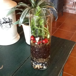 Terrarium http://sensiblegardening.com/the-closed-terrarium/