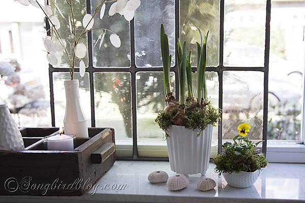 spring window sill http://www.hometalk.com/msongbird