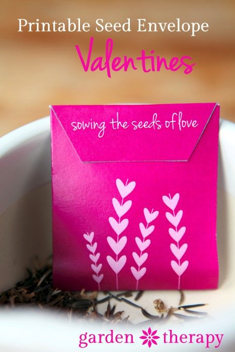 seed packet printable http://gardentherapy.ca/seed-packet-valentines/