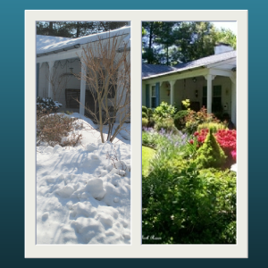 Winter & Spring https://ourfairfieldhomeandgarden.com/spring-fever/