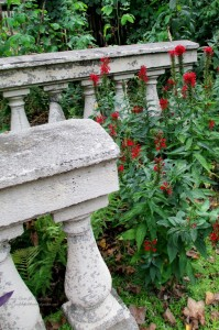 The DCH http://ourfairfieldhomeandgarden.com/field-trip-the-delaware-center-for-horticulture/
