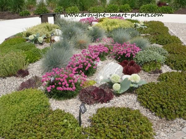 Un H2O Garden http://www.drought-smart-plants.com/unh2o-garden.html#axzz2xM96jVBg