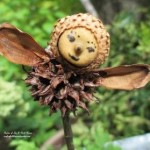 Garden Fairies http://ourfairfieldhomeandgarden.com/diy-project-making-fairies-from-natural-materials/