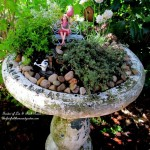 Birdbath Fairy Garden https://ourfairfieldhomeandgarden.com/diy-project-mothers-day-fairy-garden/