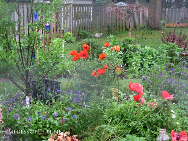 poppies http://empressofdirt.net/seed-saving-tip-mark-your-favourite-blossoms/