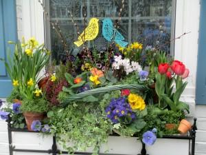 Spring Windowbox https://ourfairfieldhomeandgarden.com/diy-project-spring-windowbox-time/