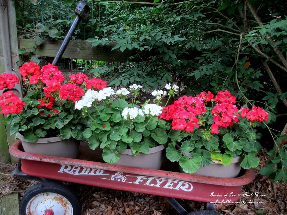 Wagon Planter https://ourfairfieldhomeandgarden.com/container-gardens-our-fairfield-home-garden/