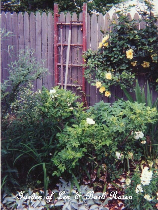 Garden Ladders https://ourfairfieldhomeandgarden.com/garden-ladders/