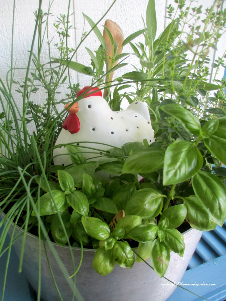Cooking Pot Herb Garden http://ourfairfieldhomeandgarden.com/container-gardens-our-fairfield-home-garden/