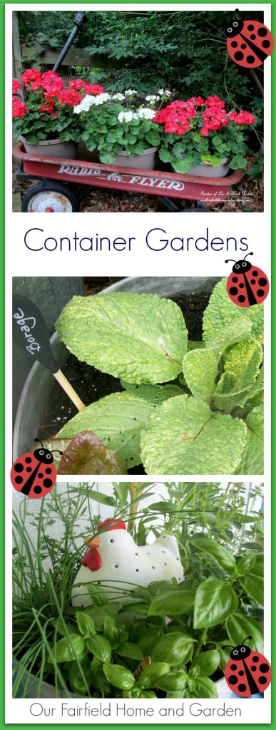 Container Gardens http://ourfairfieldhomeandgarden.com/container-gardens-our-fairfield-home-garden/