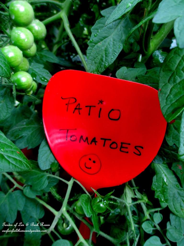Dollar Store Garden Marker https://ourfairfieldhomeandgarden.com/kitschy-kitchen-garden-accents/