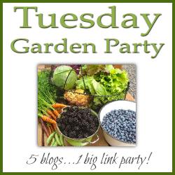 Tuesday Garden Party http://creativecountrymom.com/