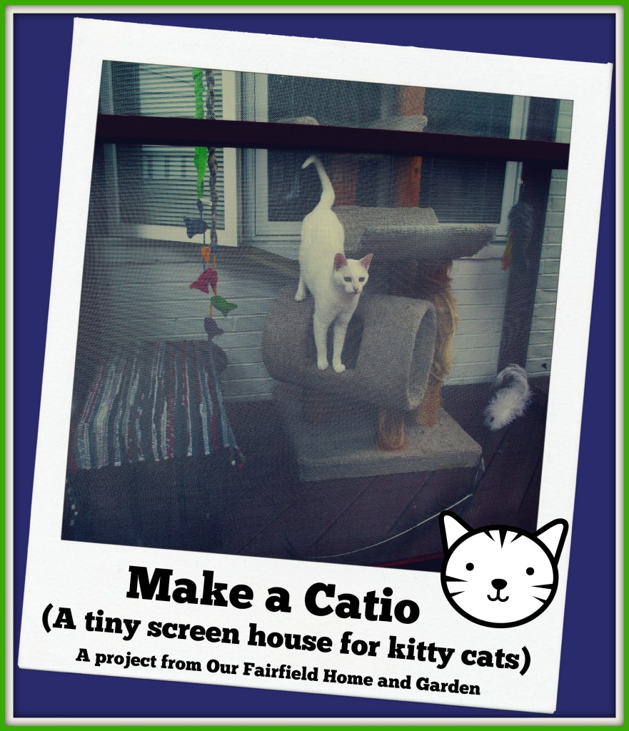 Catio http://ourfairfieldhomeandgarden.com/build-a-catio-a-tiny-screen-house-for-kitty-cats/