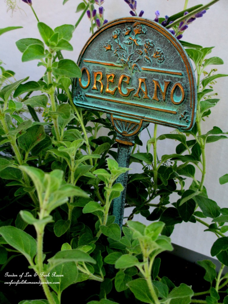 Oregano in the Windowsill Windowbox https://ourfairfieldhomeandgarden.com/diy-windowsill-windowboxes/