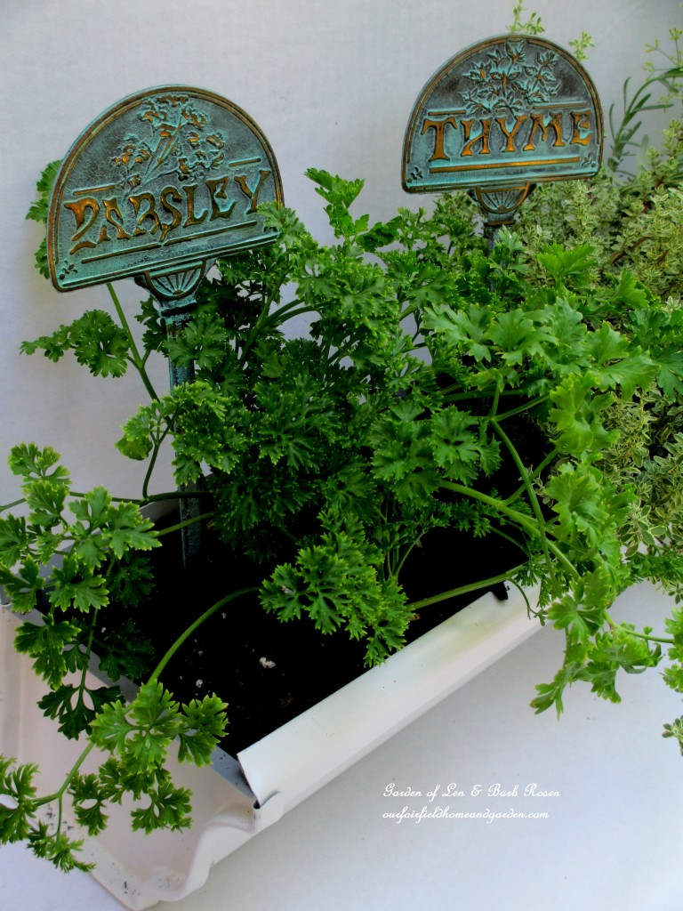 Prsley & Time in the Windowsill Windowbox http://ourfairfieldhomeandgarden.com/diy-windowsill-windowboxes/