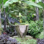 Chanticleer Garden https://ourfairfieldhomeandgarden.com/field-trip-the-unusual-and-romantic-gardens-of-chanticleer/