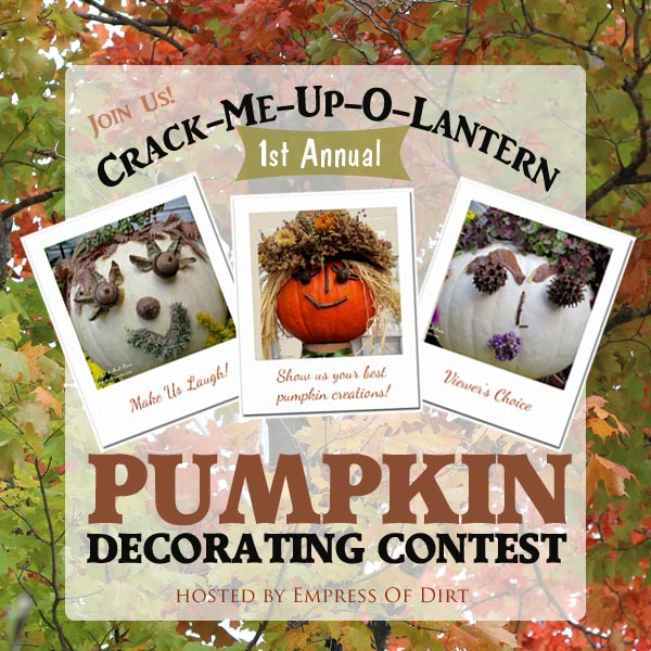 Pumkin Decorating Contest http://empressofdirt.net/pumpkin-decorating-contest/