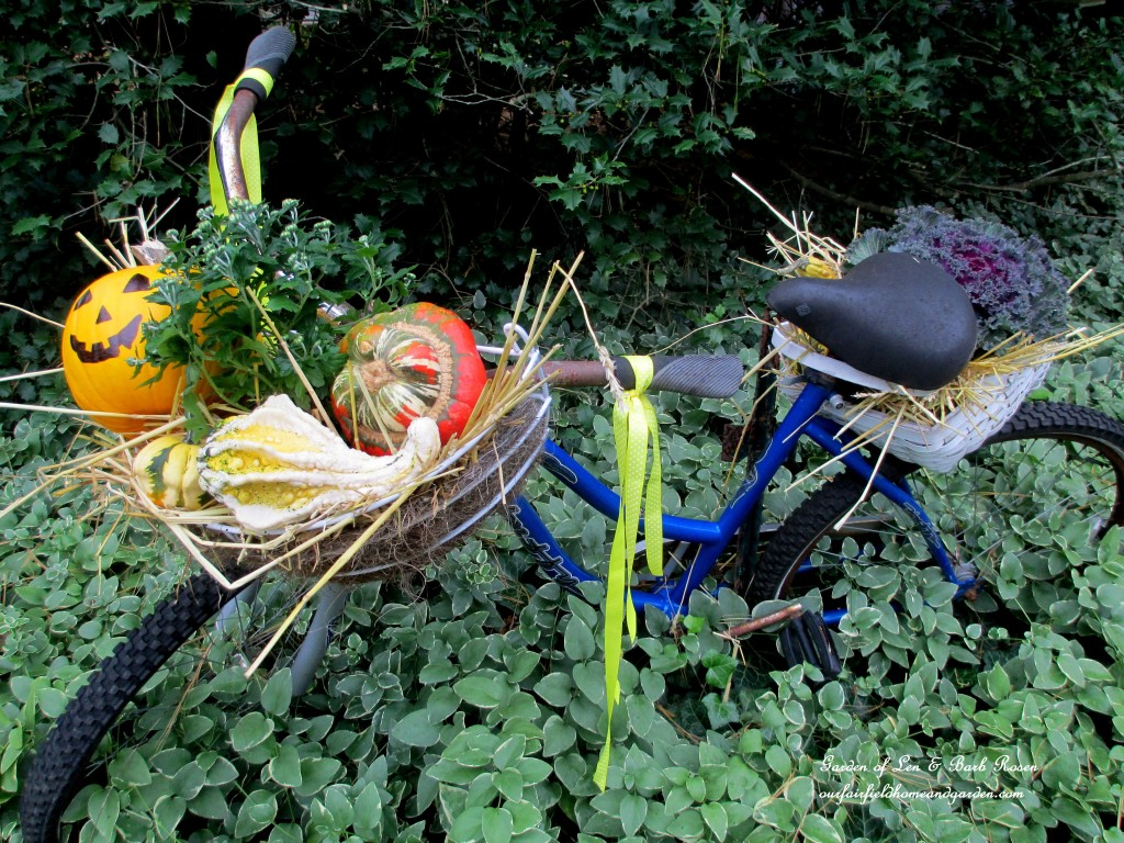 Decorate a Fall Bike Planter! https://ourfairfieldhomeandgarden.com/fall-outdoor-decor-our-fairfield-home-and-garden/