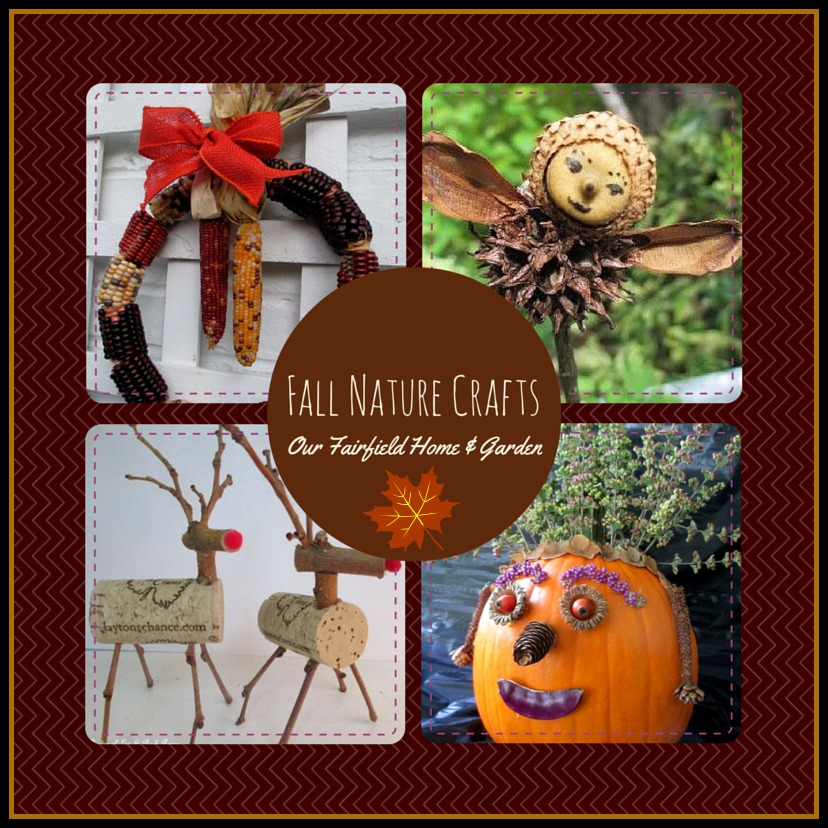 Fall Nature Crafts https://ourfairfieldhomeandgarden.com/diy-fall-nature-crafts/