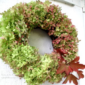 Hydrangea Wreath https://ourfairfieldhomeandgarden.com/diy-free-fall-wreath-using-hydrangeas/