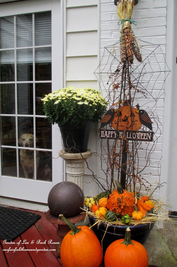 Kitchen Door Decorations https://ourfairfieldhomeandgarden.com/fall-outdoor-decor-our-fairfield-home-and-garden/