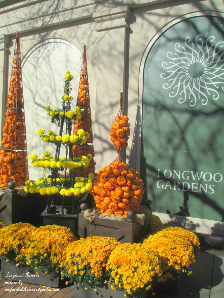 Fall at Longwood Gardens https://ourfairfieldhomeandgarden.com/field-trip-chrysanthemum-festival-at-longwood-gardens/
