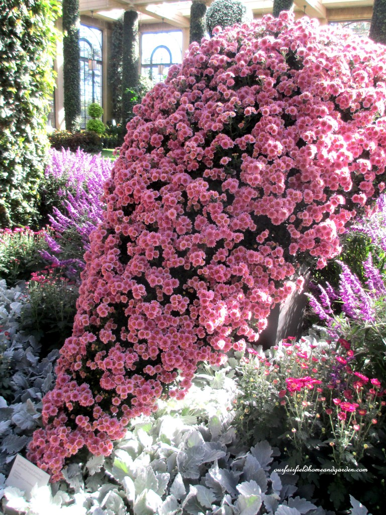 """Tsuribito"" https://ourfairfieldhomeandgarden.com/field-trip-chrysanthemum-festival-at-longwood-gardens/"