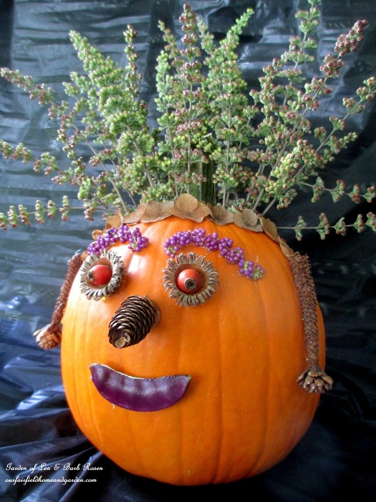 Pumpkin decorated with natural materials http://ourfairfieldhomeandgarden.com/diy-fall-nature-crafts/